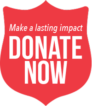 donate-button-make-a-lasting-impact-donate-now-2017